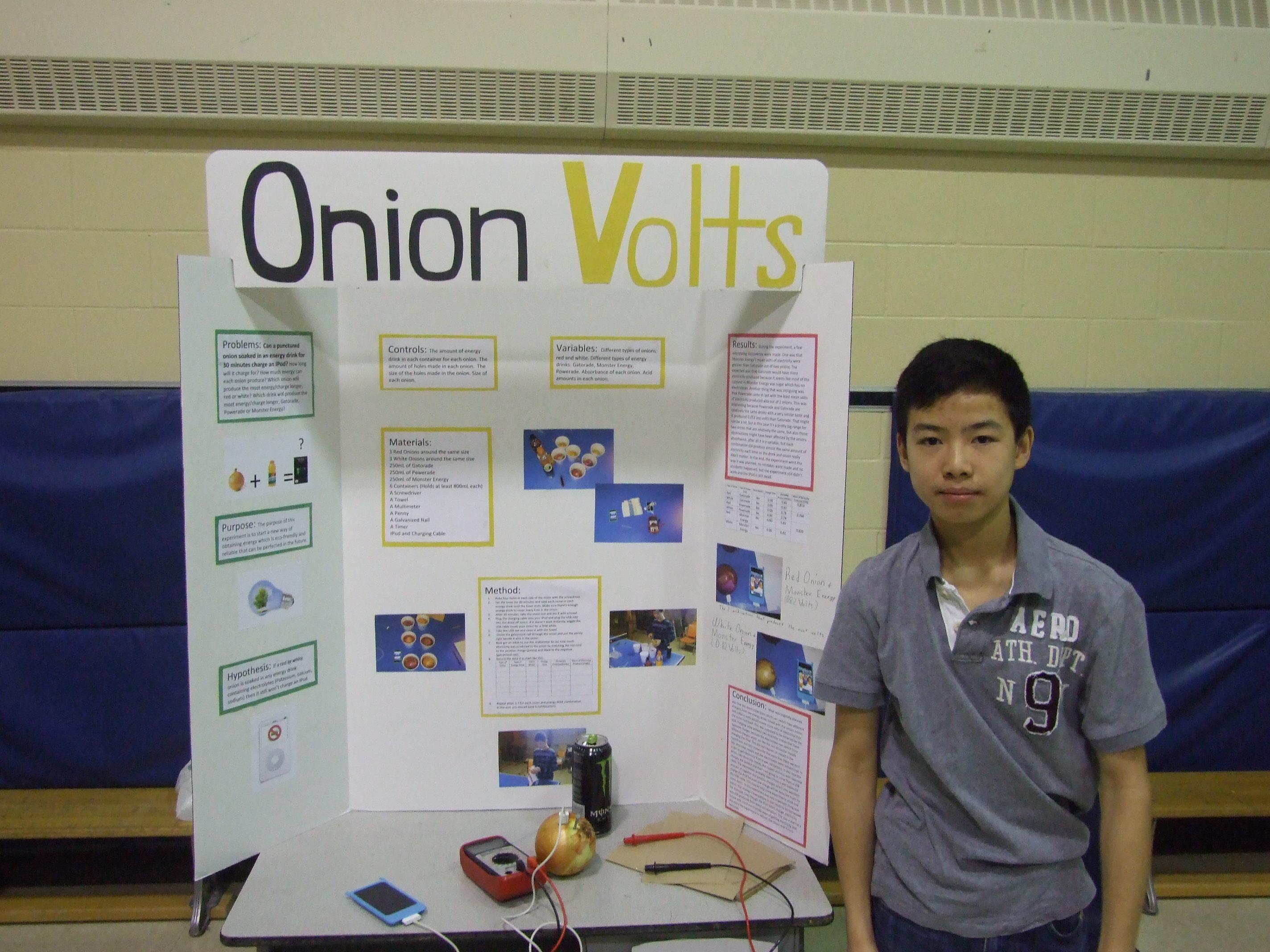 dar essay contest rules